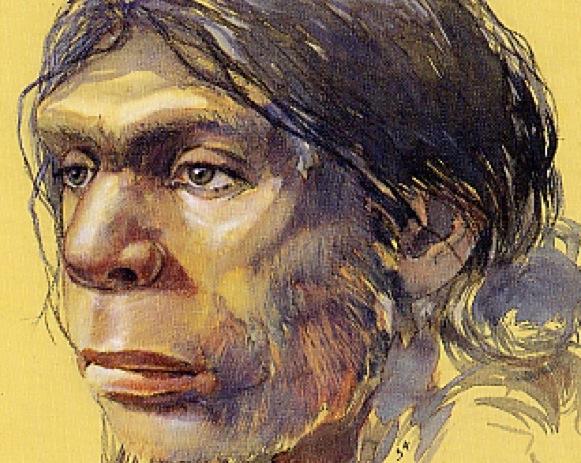 R39a et R39b : Ecologie et diversité des hommes du Paléolithique, M. Patou-Mathis et C. Vercoutère