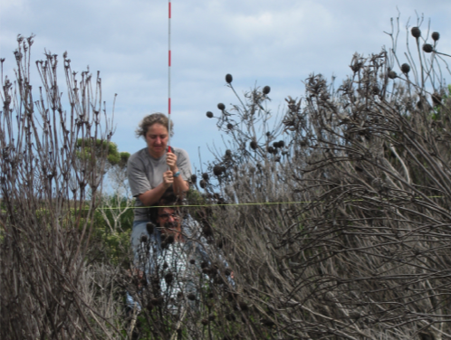 R42 : Regard sur la biodiversité, l'évolution et la recherche, par Isabelle Olivieri
