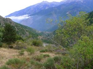 Figure 1: Le Col de Mantet (Pyrénées Orientales, France) - Photo : Alicia Jarrige