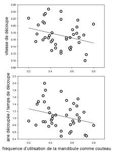 Figure 4. Relation entre la vitesse de découpe et la préférence pour une mandibule (gauche ou droite) comme couteau), et relation entre l'efficacité de découpe et la préférence.