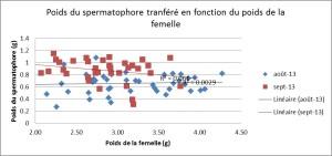 Poids spermatophore vs femelles