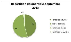 Repartition des individus Sept 2013