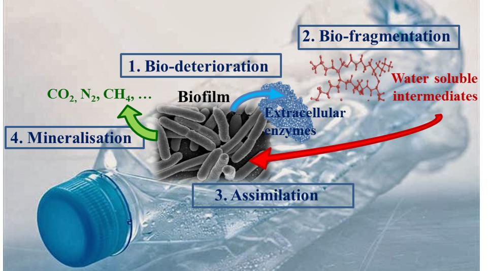 R63 La dégradation des plastiques en mer, par C. Dussud et J-F. Ghiglione