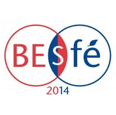 Retours sur le colloque BES-SFE de Lille: le mot du président de la SFE