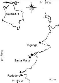 Figure 2. Localisation des sites d'échantillonnage dans la Baie de Santa Marta, au nord de la Colombie.