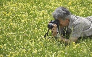 Programme OrDyNord. Etude des pelouses calaminaires. © G.Billon