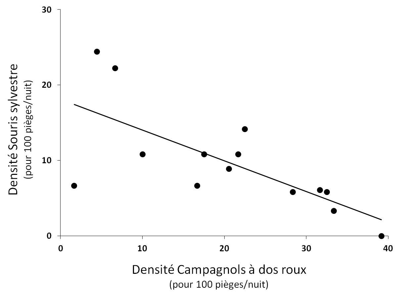 Figure 5. Relation significative entre la densité de Souris sylvestre et la densité de Campagnols à dos roux de Gapper (r² = 0.50 ; P < 0.001).