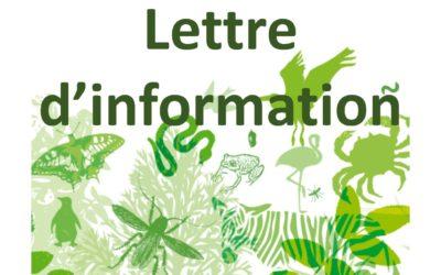 Lettre d'information #2