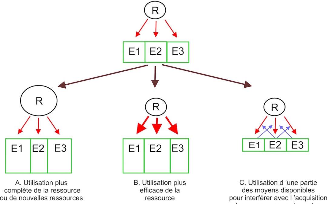 RO3 : Compétition, évolution, système de recherche et société, par Sébastien Barot