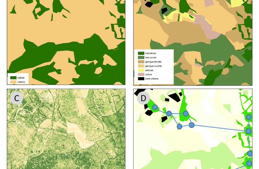 RO4 : Nouveaux horizons pour l'Ecologie des paysages, par Marc Deconchat et Clélia Sirami