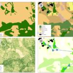 Quatre exemples de représentation d'un même paysage