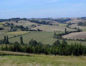 Paysage typique des coteaux du Sud-ouest de la France