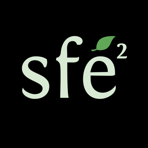 Call for names for the 2018 SFE2 Prize – deadline June 1st