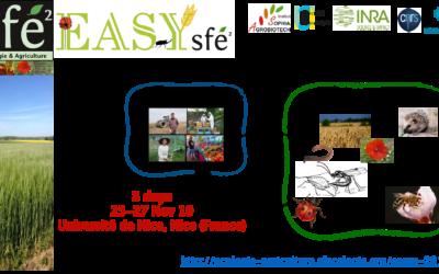 [Extended deadline] Colloque EASYs – Nice, 25-27 Novembre 2019