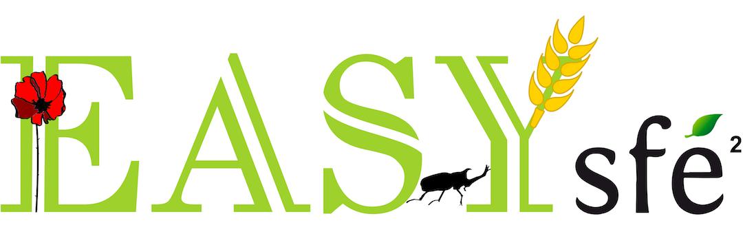 Colloque EASYs – Nice, 25-27 Novembre 2019