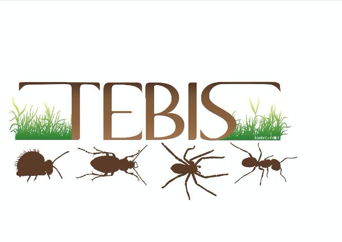 Appel à communications – IXèmes journées TEBIS du 05 au 07/10/20