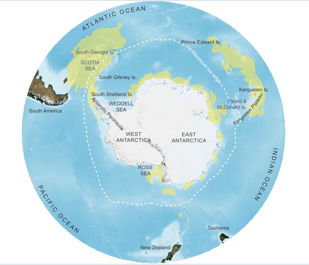 R94 : Les prédateurs marins, écoindicateurs de l'Océan austral, par Yan Ropert-Coudert et al.