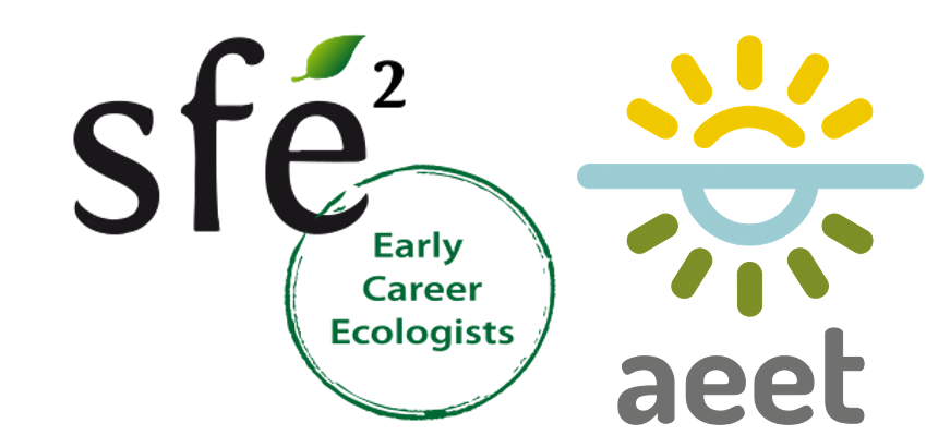 AEET-SFE2 Conference for Early Career Researchers – A summary